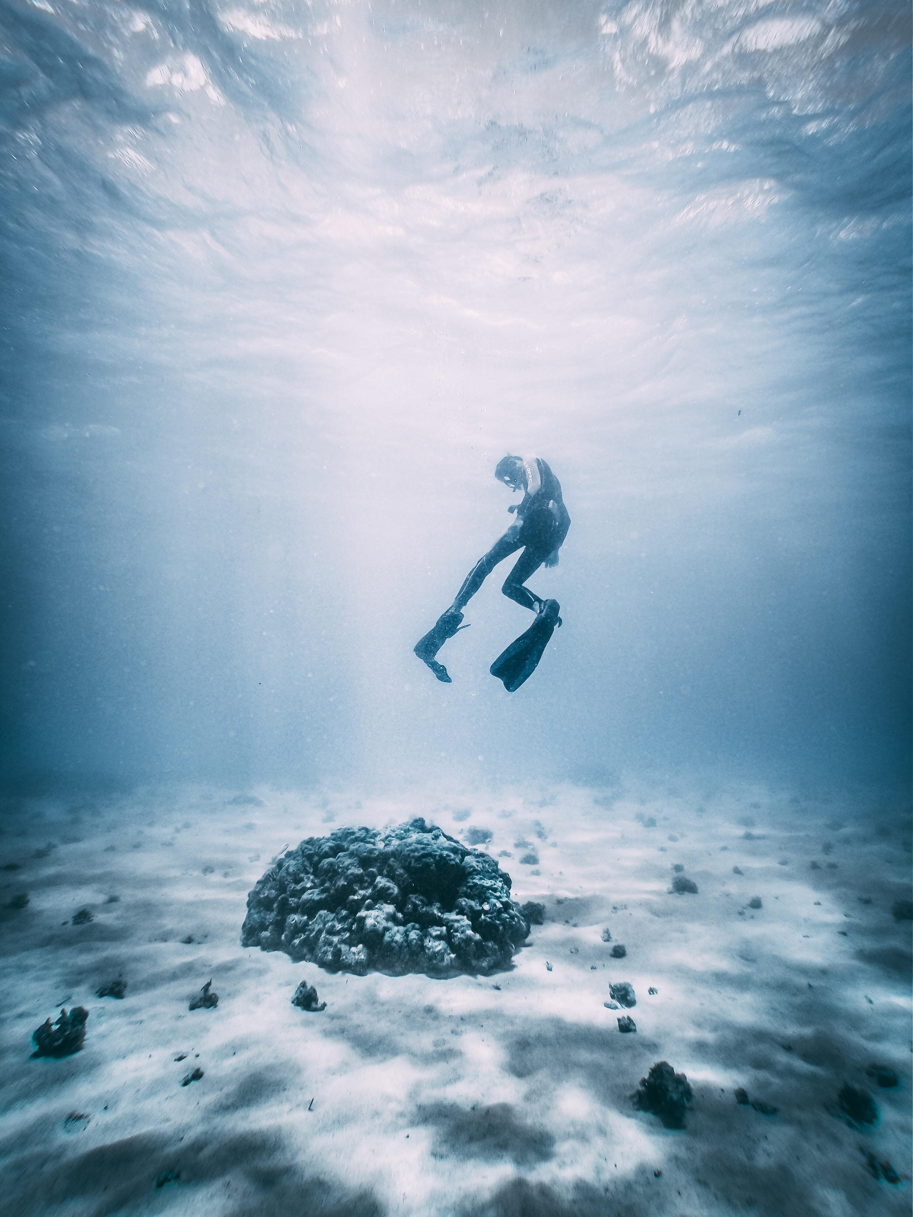 Scuba Birds- Diving In Koh Tao & Samui, A Divers Dream In Paradise