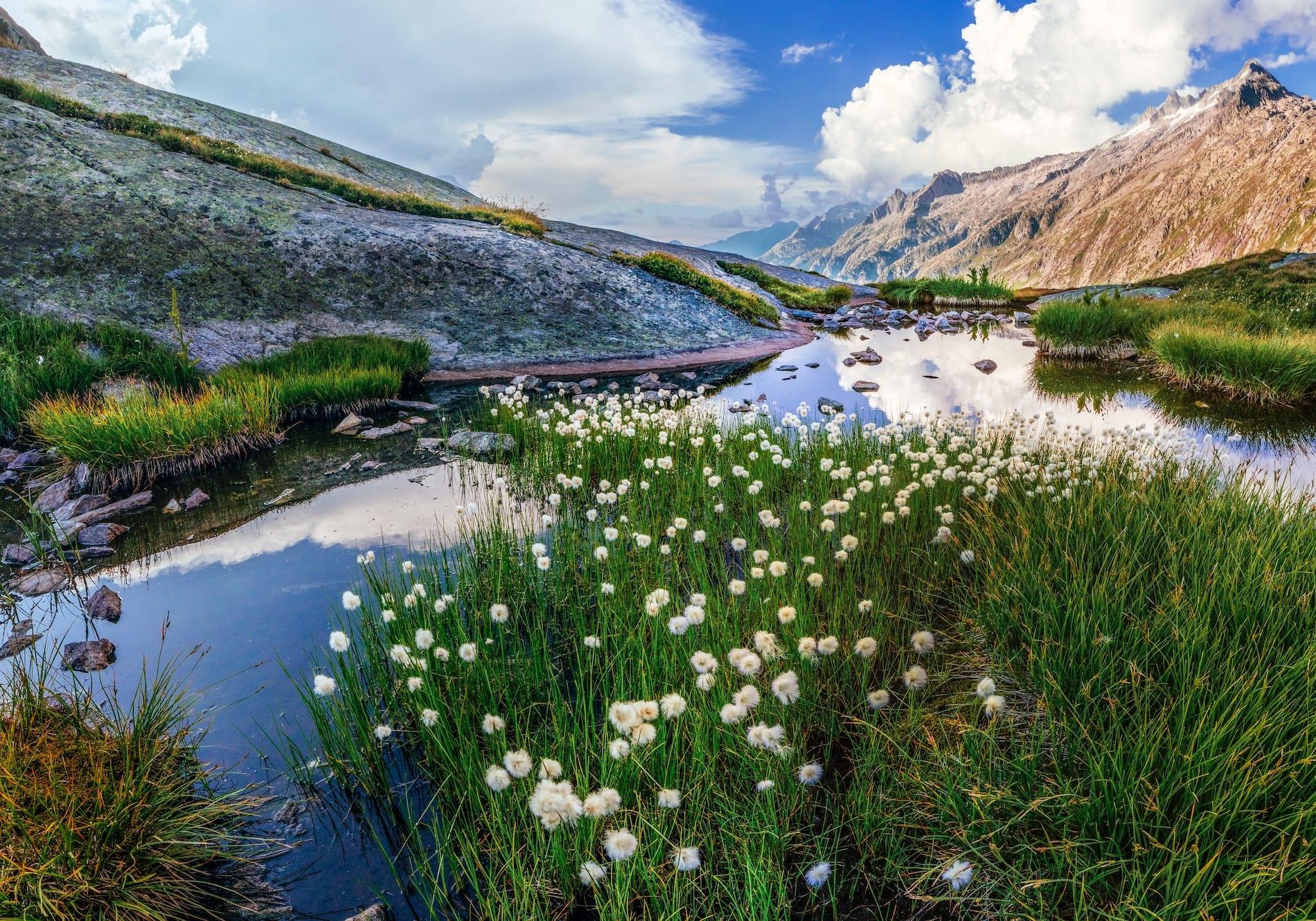 Helvetia: Top 15 Best Hiking and Trekking Tours in Switzerland [Video]